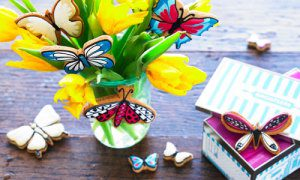 Biscuiteers butterfly tin