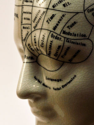 Porcelain-brain
