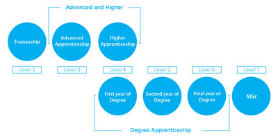 Apprenticeship diagram