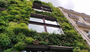 Eco-building